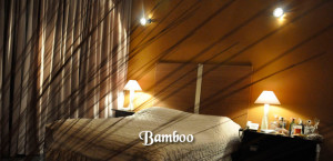 bamboo-el-eden